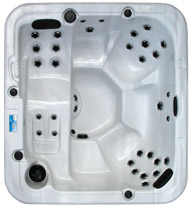 POOL SPA USA Palmetto by Garden Leisure Spas